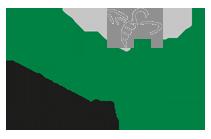 WLLV Logo